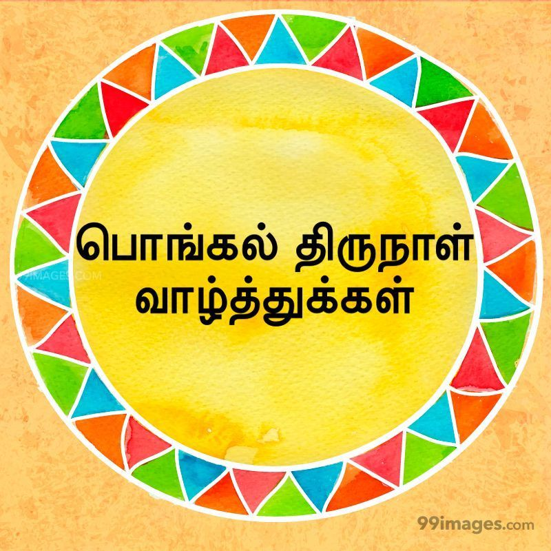 [14th January 2021] Happy Pongal (Pongal Vazhthukkal) in Tamil, WhatsApp DP Images, Wishes, Quotes, Messages HD (282322) - Pongal