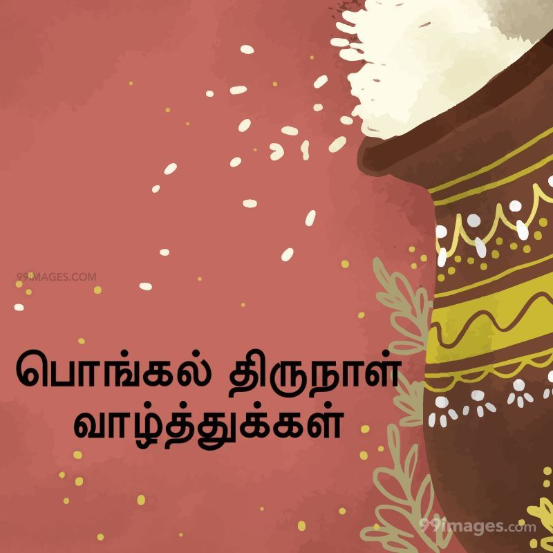 [14th January 2021] Happy Pongal (Pongal Vazhthukkal) in Tamil, WhatsApp DP Images, Wishes, Quotes, Messages HD (282274) - Pongal