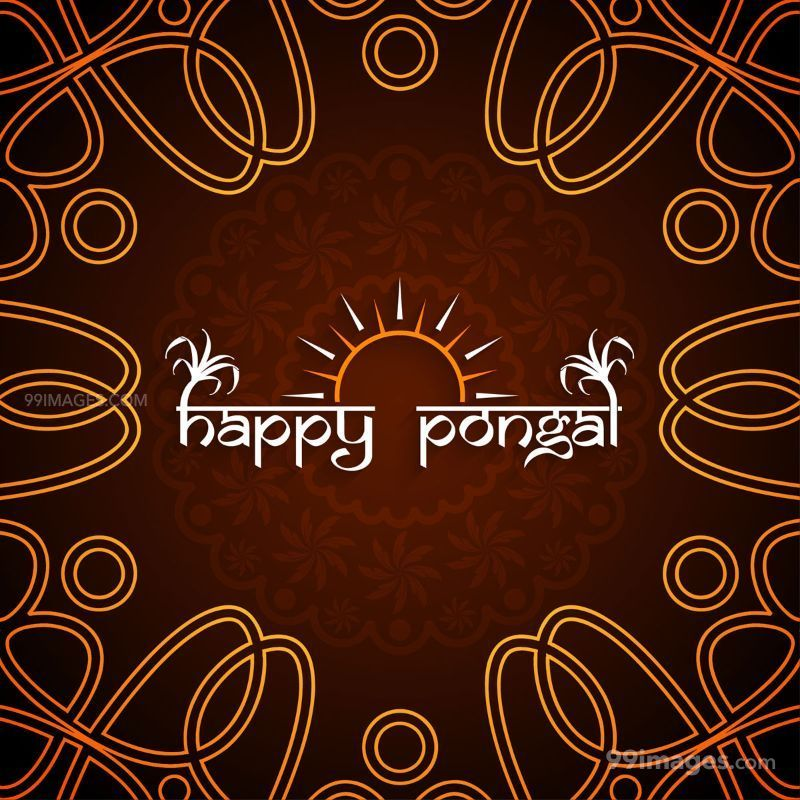 [15th January 2020] Happy Pongal (Pongal Vazhthukkal) WhatsApp DP Images, Wishes, Quotes, Messages HD (283434) - Pongal