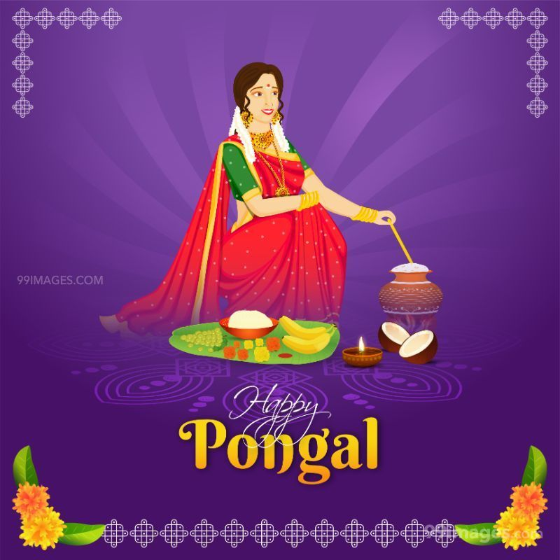 [15th January 2020] Happy Pongal (Pongal Vazhthukkal) WhatsApp DP Images, Wishes, Quotes, Messages HD (283471) - Pongal