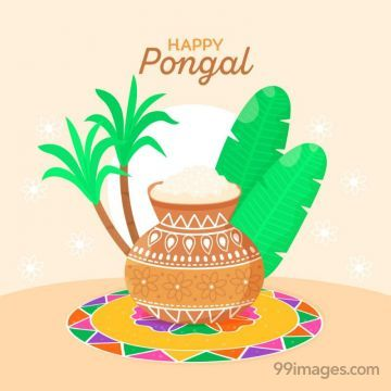 [14th January 2021] Happy Pongal (Pongal Vazhthukkal) WhatsApp DP Images, Wishes, Quotes, Messages HD