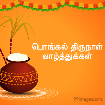 [15th January 2020] Happy Pongal (Pongal Vazhthukkal) in Tamil, WhatsApp DP Images, Wishes, Quotes, Messages HD