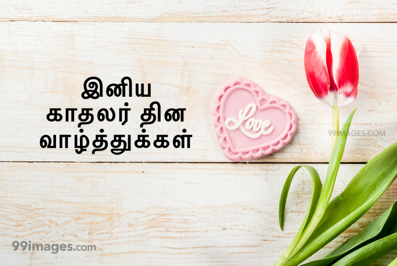 [14 February 2020] Happy Valentines Day in Tamil (kadhalar dhinam vazhthukkal) Romantic Heart Images, Wishes, Love Quotes, Messages (302623) - Valentine's Day