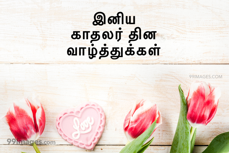[14 February 2020] Happy Valentines Day in Tamil (kadhalar dhinam vazhthukkal) Romantic Heart Images, Wishes, Love Quotes, Messages (302556) - Valentine's Day