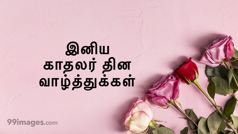 [14 February 2020] Happy Valentines Day in Tamil (kadhalar dhinam vazhthukkal) Romantic Heart Images, Wishes, Love Quotes, Messages (302660) - Valentine's Day