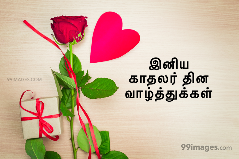 [14 February 2020] Happy Valentines Day in Tamil (kadhalar dhinam vazhthukkal) Romantic Heart Images, Wishes, Love Quotes, Messages (302655) - Valentine's Day