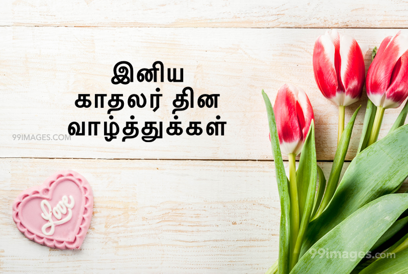 [14 February 2021] Happy Valentines Day in Tamil (kadhalar dhinam vazhthukkal) Romantic Heart Images, Wishes, Love Quotes, Messages (302572) - Valentine's Day