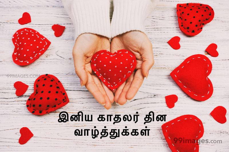 [14 February 2020] Happy Valentines Day in Tamil (kadhalar dhinam vazhthukkal) Romantic Heart Images, Wishes, Love Quotes, Messages (302635) - Valentine's Day