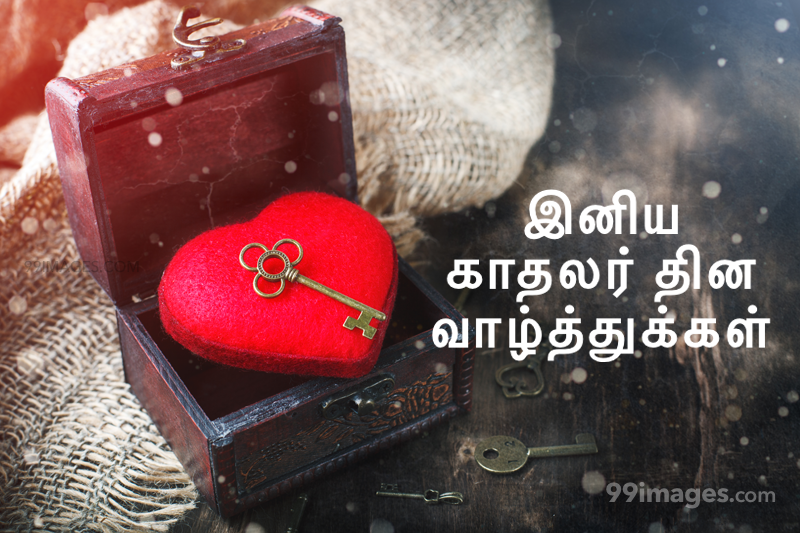 [14 February 2020] Happy Valentines Day in Tamil (kadhalar dhinam vazhthukkal) Romantic Heart Images, Wishes, Love Quotes, Messages (302578) - Valentine's Day