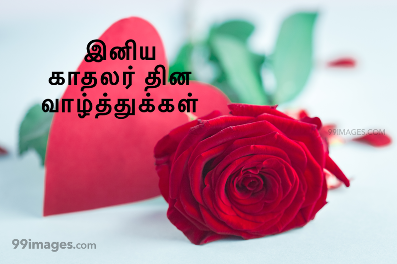 [14 February 2020] Happy Valentines Day in Tamil (kadhalar dhinam vazhthukkal) Romantic Heart Images, Wishes, Love Quotes, Messages (302658) - Valentine's Day
