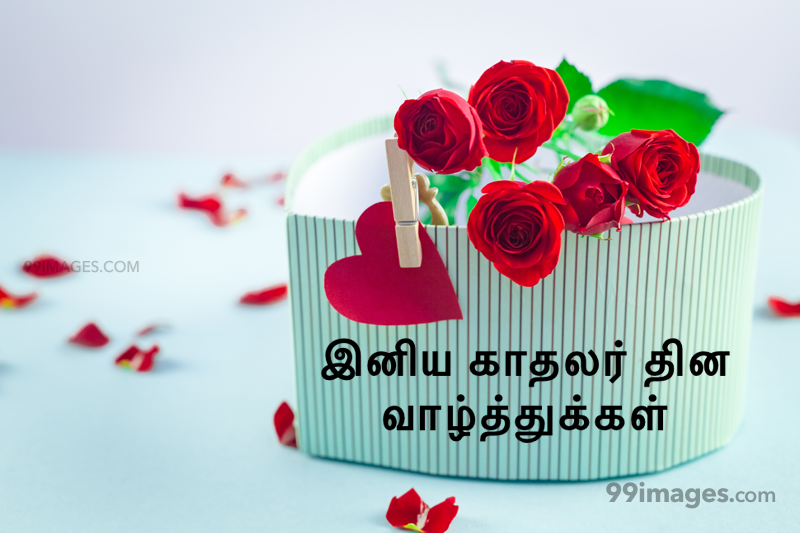 [14 February 2020] Happy Valentines Day in Tamil (kadhalar dhinam vazhthukkal) Romantic Heart Images, Wishes, Love Quotes, Messages (302657) - Valentine's Day