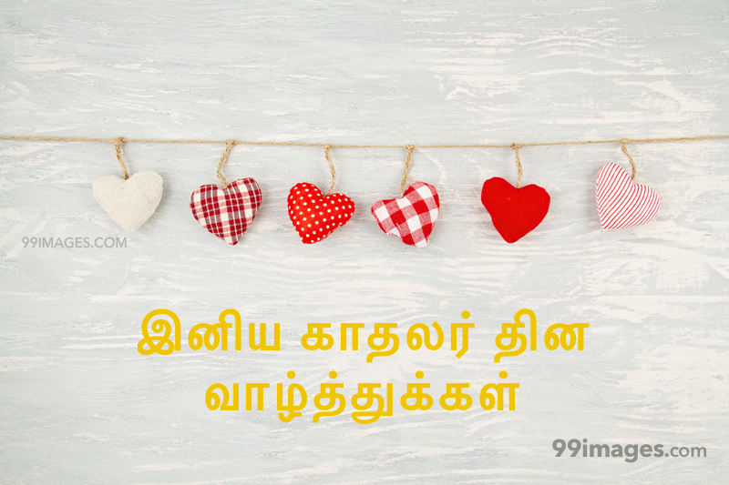 [14 February 2020] Happy Valentines Day in Tamil (kadhalar dhinam vazhthukkal) Romantic Heart Images, Wishes, Love Quotes, Messages (302534) - Valentine's Day