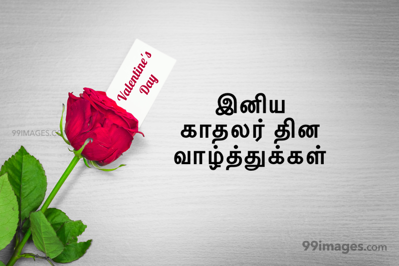 [14 February 2020] Happy Valentines Day in Tamil (kadhalar dhinam vazhthukkal) Romantic Heart Images, Wishes, Love Quotes, Messages (302659) - Valentine's Day
