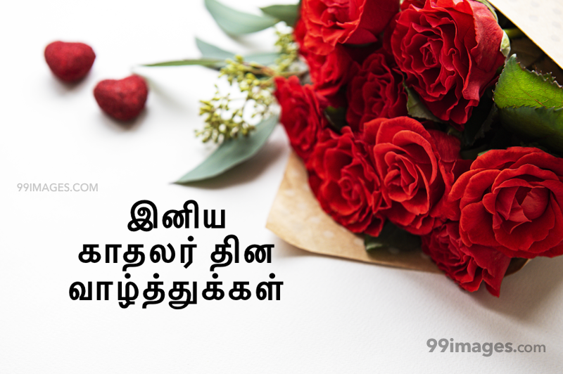 [14 February 2020] Happy Valentines Day in Tamil (kadhalar dhinam vazhthukkal) Romantic Heart Images, Wishes, Love Quotes, Messages (302649) - Valentine's Day