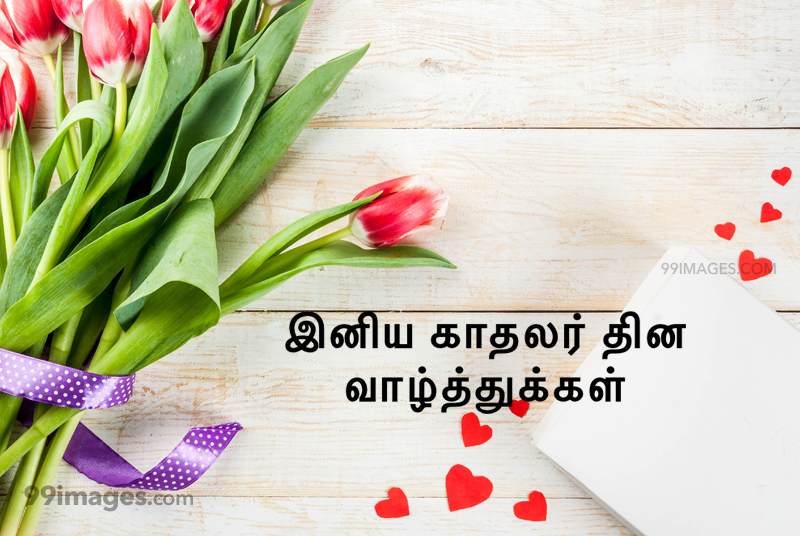 [14 February 2020] Happy Valentines Day in Tamil (kadhalar dhinam vazhthukkal) Romantic Heart Images, Wishes, Love Quotes, Messages (302651) - Valentine's Day