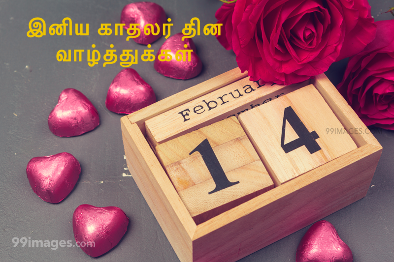 [14 February 2020] Happy Valentines Day in Tamil (kadhalar dhinam vazhthukkal) Romantic Heart Images, Wishes, Love Quotes, Messages (302656) - Valentine's Day
