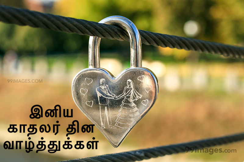 [14 February 2020] Happy Valentines Day in Tamil (kadhalar dhinam vazhthukkal) Romantic Heart Images, Wishes, Love Quotes, Messages (302563) - Valentine's Day