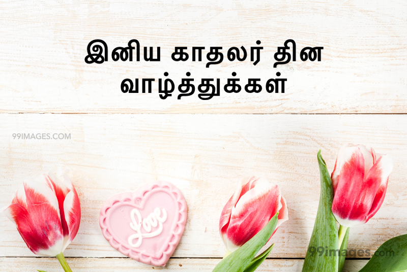 [14 February 2020] Happy Valentines Day in Tamil (kadhalar dhinam vazhthukkal) Romantic Heart Images, Wishes, Love Quotes, Messages (302653) - Valentine's Day