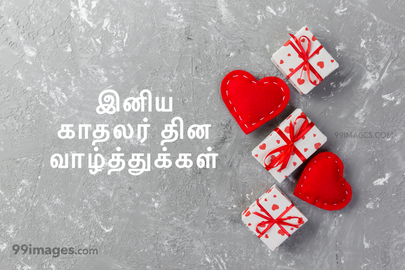 [14 February 2021] Happy Valentines Day in Tamil (kadhalar dhinam vazhthukkal) Romantic Heart Images, Wishes, Love Quotes, Messages (302567) - Valentine's Day