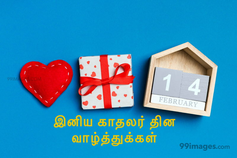 [14 February 2021] Happy Valentines Day in Tamil (kadhalar dhinam vazhthukkal) Romantic Heart Images, Wishes, Love Quotes, Messages (302533) - Valentine's Day