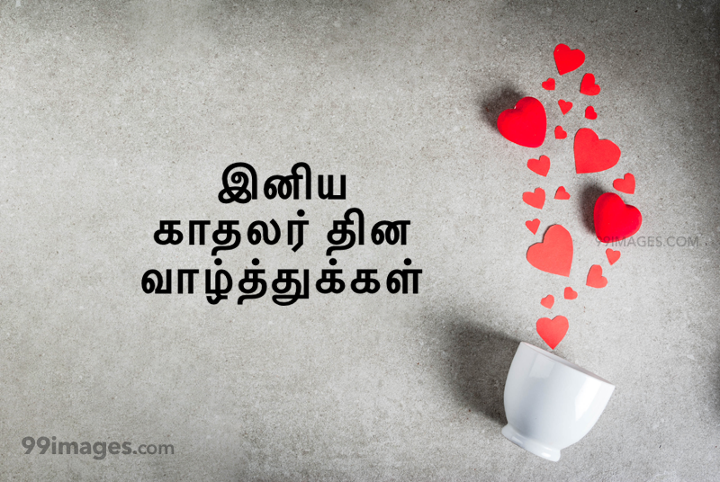 [14 February 2020] Happy Valentines Day in Tamil (kadhalar dhinam vazhthukkal) Romantic Heart Images, Wishes, Love Quotes, Messages (302648) - Valentine's Day
