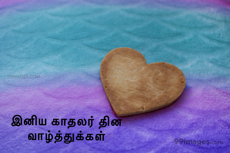 [14 February 2020] Happy Valentines Day in Tamil (kadhalar dhinam vazhthukkal) Romantic Heart Images, Wishes, Love Quotes, Messages (302576) - Valentine's Day
