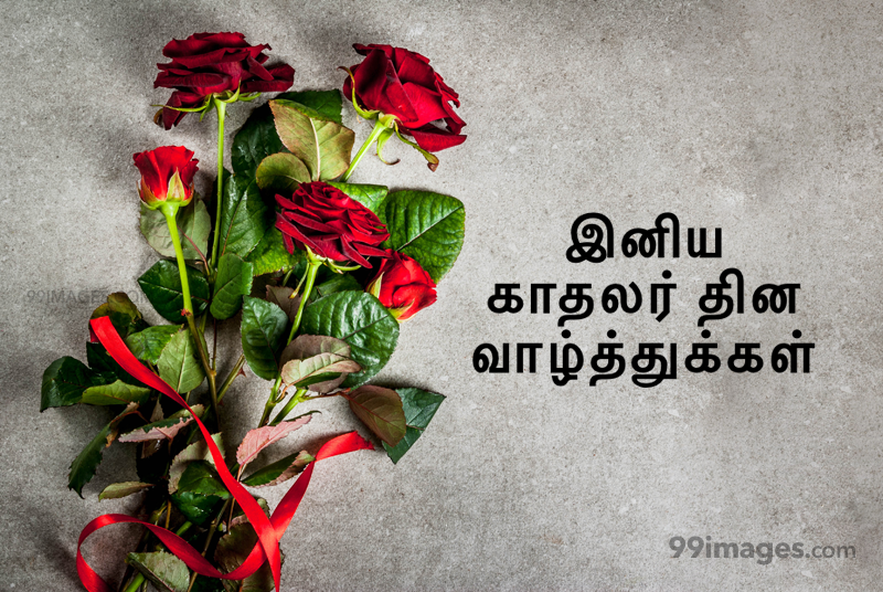 [14 February 2020] Happy Valentines Day in Tamil (kadhalar dhinam vazhthukkal) Romantic Heart Images, Wishes, Love Quotes, Messages (302616) - Valentine's Day