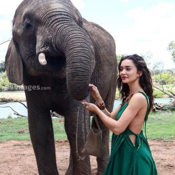 Amy Jackson Hot HD Photos & Wallpapers for mobile (1080p)