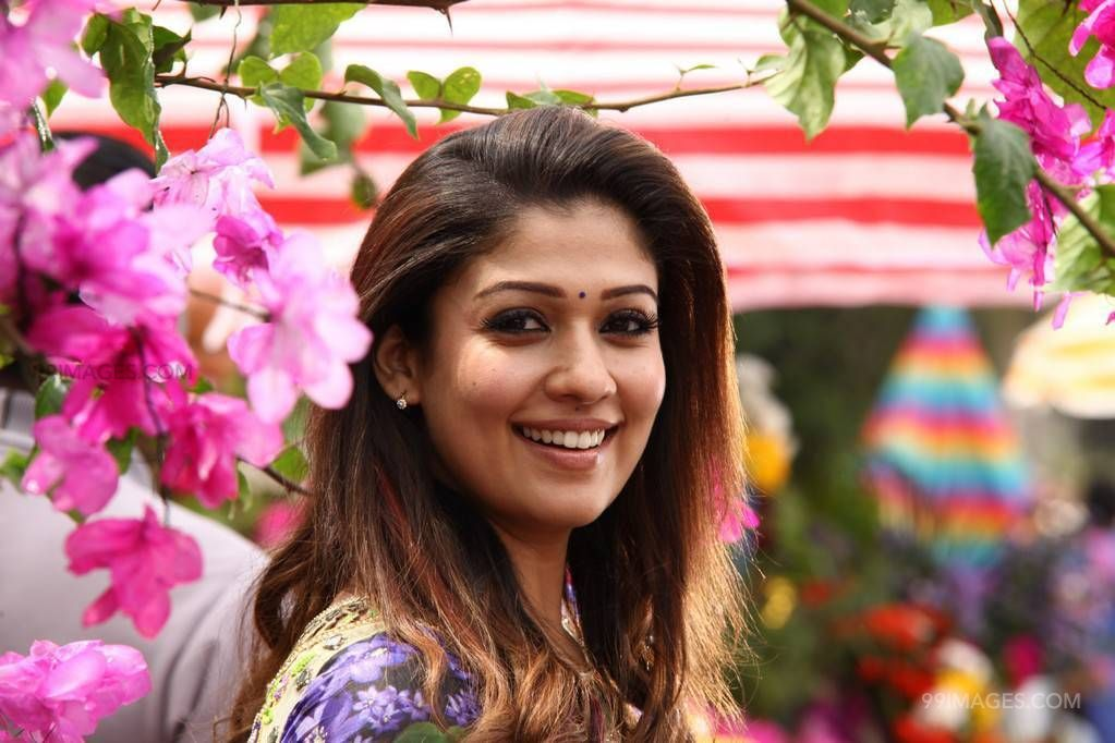 Nayanthara Cute HD Photos (1080p) (nayanthara, kollywood, mollywood, tollywood, lady super star, actress) (43090) - Nayanthara