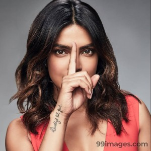 Priyanka Chopra Hot Beautiful HD Photos/Wallpapers (1080p)