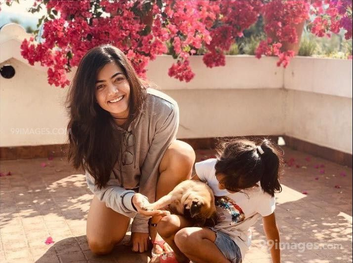Rashmika Mandanna Beautiful HD Photos & Mobile Wallpapers HD (Android/iPhone) (1080p) (513960) - Rashmika Mandanna