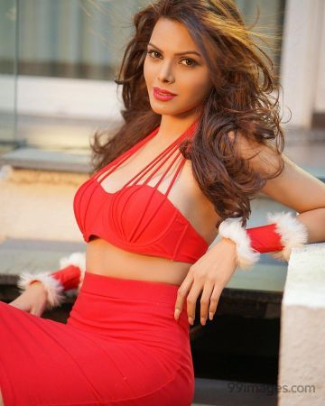 Sherlyn Chopra Hot HD Photos & Wallpapers for mobile Download, WhatsApp DP (1080p, 4k)