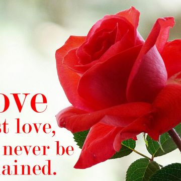 55 Love Quotes Android Iphone Desktop Hd Backgrounds