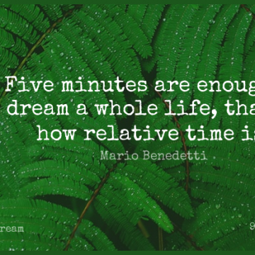 Short Dream Quote by Mario Benedetti about Enough,Minutes,Whole Life for WhatsApp DP / Status, Instagram Story, Facebook Post.