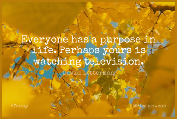 Short Funny Quote by David Letterman about Sarcastic,Purpose,Television for WhatsApp DP / Status, Instagram Story, Facebook Post.