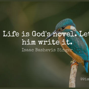 Short Life Quote by Isaac Bashevis Singer about Writing,Literature,Novel for WhatsApp DP / Status, Instagram Story, Facebook Post.