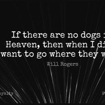 Short Loyalty Quote by Will Rogers about Cute,Death,Dog for WhatsApp DP / Status, Instagram Story, Facebook Post.