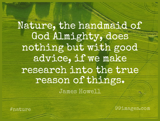 Short Nature Quote by James Howell about Advice,Doe,Research for WhatsApp DP / Status, Instagram Story, Facebook Post.