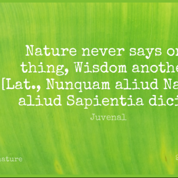 Short Nature Quote by Juvenal about One Thing for WhatsApp DP / Status, Instagram Story, Facebook Post.