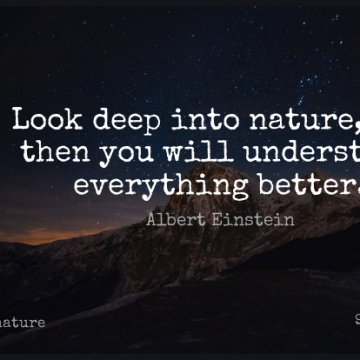 Short Nature Quote by Albert Einstein about Inspirational,Summer,Peace for WhatsApp DP / Status, Instagram Story, Facebook Post.