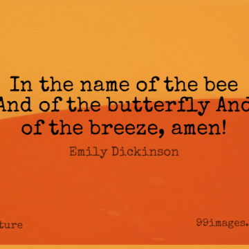 Short Nature Quote by Emily Dickinson about Smart,Butterfly,Names for WhatsApp DP / Status, Instagram Story, Facebook Post.