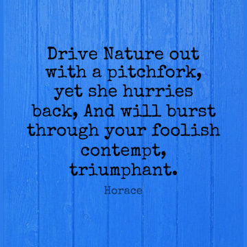 Short Nature Quote by Horace about Science,Foolish,Natural for WhatsApp DP / Status, Instagram Story, Facebook Post.