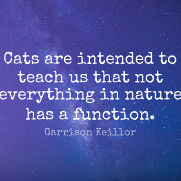 Short Nature Quote by Garrison Keillor about Cat,Garden,Intelligence for WhatsApp DP / Status, Instagram Story, Facebook Post.