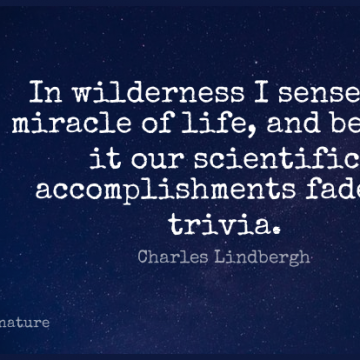 Short Nature Quote by Charles Lindbergh about Accomplishment,Miracle,Green Trees for WhatsApp DP / Status, Instagram Story, Facebook Post.