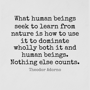 Short Nature Quote by Henry David Thoreau about Believe,Yield,Wilderness for WhatsApp DP / Status, Instagram Story, Facebook Post.