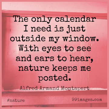 Short Nature Quote by Alfred Armand Montapert about Wisdom,Eye,Needs for WhatsApp DP / Status, Instagram Story, Facebook Post.