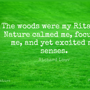 Short Nature Quote by Richard Louv about Parenting,Woods,Ritalin for WhatsApp DP / Status, Instagram Story, Facebook Post.