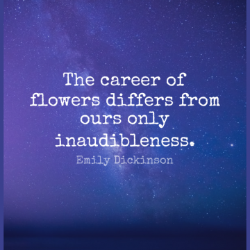 Short Nature Quote by Emily Dickinson about Flower,Careers for WhatsApp DP / Status, Instagram Story, Facebook Post.