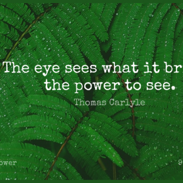 Short Power Quote by Thomas Carlyle about Knowledge,Eye,Vision for WhatsApp DP / Status, Instagram Story, Facebook Post.