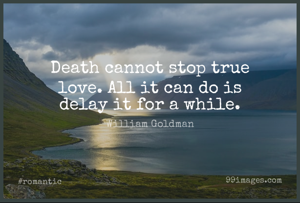 Short Romantic Quote by William Goldman about Movie Love,Delay,Princess Bride for WhatsApp DP / Status, Instagram Story, Facebook Post. (503593) - Romantic Quotes